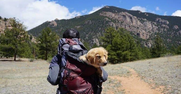 Hoe pak je een backpack in? 15 tips + handige reisspullen
