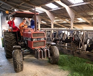 boerencamping gelderland