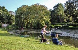 camping aan het water zuid holland