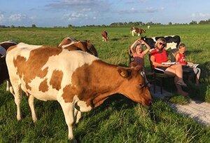 boerencamping friesland