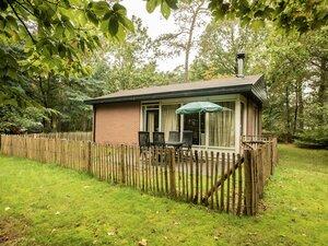 vakantiehuis veluwe met hond omheinde tuin